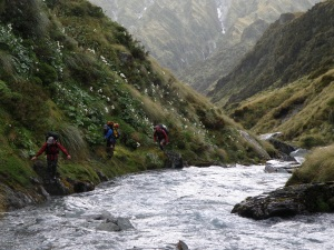 travelling stream side
