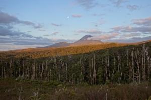 Moonrise over Ngaurahoe
