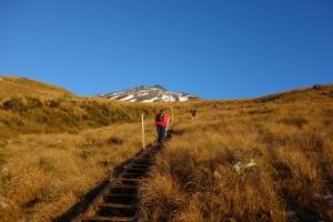 Ascending Fanthams Peak track