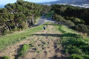 Penultimate hill Aug run thru