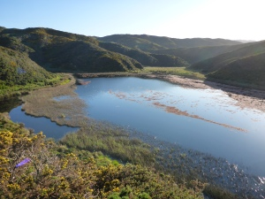 Lake Kohangapiripiri