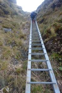 Ascending to Tararua Peaks